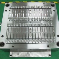 Hot New Products Plastic Injection Mould