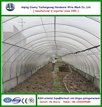 Plastic anti aphid net for greenhouse, white color ( Manufacturer )