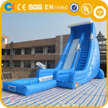 Giant Inflatable Dolphin water Slide for sale, wave water slide with pool , Inflatable high jumper slide