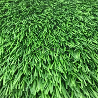 Sports Amp Entertainment Artificial Grass Amp