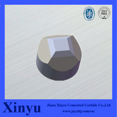 Tungsten Carbide/Hard Alloy Anvil for Diamond Production