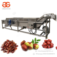 Iraq Dried Date Palm Washing and Drying Dates Processing Machinery Production Line Iraq Date Washing Machine