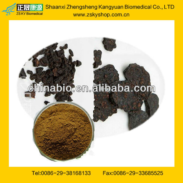 GMP Manufacturer Supply Natural Polygonum Multiflorum Plant Extract