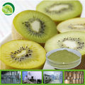 100% purity kiwi fruit powder