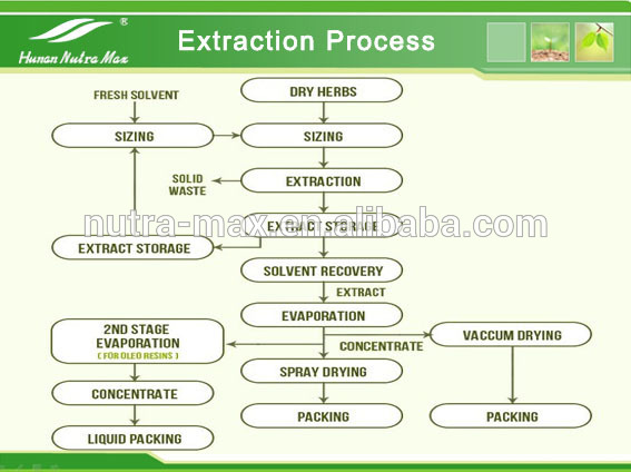 Extraction Process