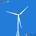 30kw wind power generator water-proof and no corrosion