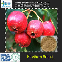 Hot Sale Hawthorn Berry Extract