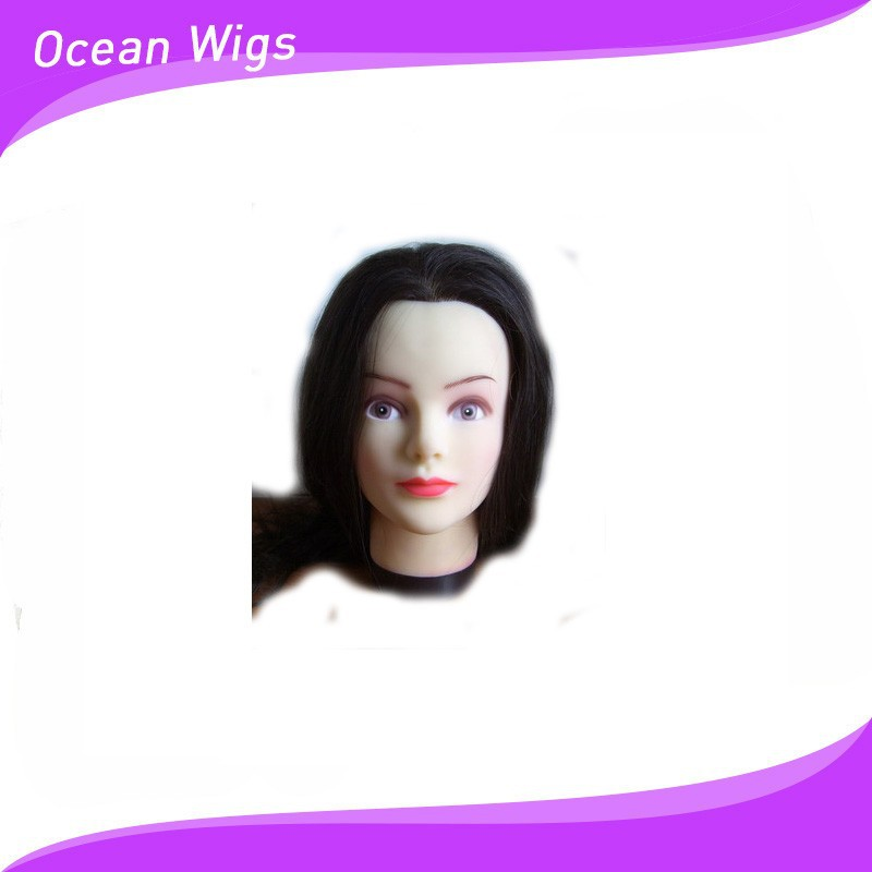 Practice head used for salon