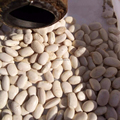 LOW PRICE White Kidney Beans size 300-330 pcs/100g, Northeast origin , Small White Kidney Beans