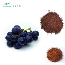 Organic Black Grape Seed Extract,Black Grape Seed Powder,Grape Fruit Seed Extract