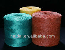 2013 Top Sell Packing PP Raffia String