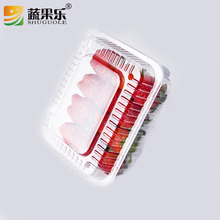 500g Disposable Plastic Fruit Packing Box with top and side vent hole