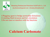 Drilling Fluid&Drilling Mud&Chemical for Oilfield-Calcium Carbonate