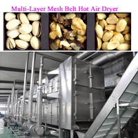 apple chips making machine