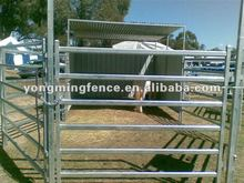 hot sale galvanized metal/steel pipe panel fence for cow and bull grazing(exporter/manufacturer/factory)