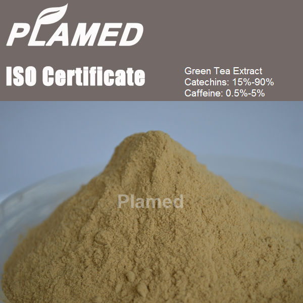 Buy puer tea extract powder,raw material puer tea extract