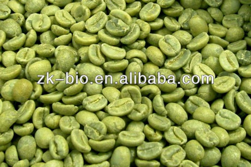 Natural Chlorogenic acid 50% Green Coffee bean extract