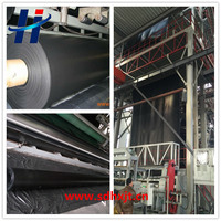 ASTM standard hdpe geomembrane liner