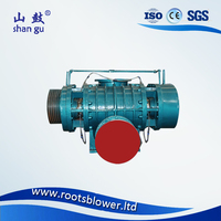 0.75-560kW power steam Roots blower
