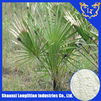 pure Saw palmetto fruit extract/Saw Palmetto Frui Extract Powder