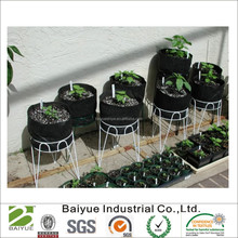 Black plant pots/grow bags