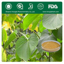 Manufacturer Supply Organic Kava Extract Kavalactones