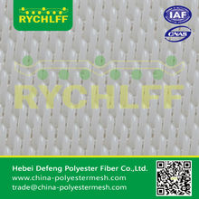 Polyester mesh for continuous filter belt(factory)