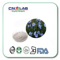 china manufacture 100% Natural Inulin Chicory Extract Powder 90% 95% Inulin