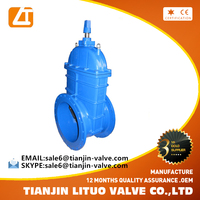 high quality ductile iron flanged ansi dn100 long stem gate valve