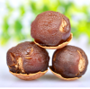 dried longan fruits export organic dried longan