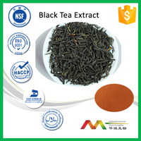 NSF-cGMP Manufacturer High Quality Polyohenols&theaflavin Black Tea Extract