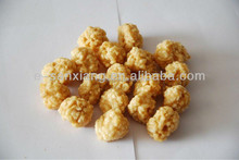 Dry Chicken Jerky and Rice Ball Feed to Dogs Pet Food Pet Treats
