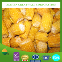 BRC ISO High quality frozen Maize sweet corn cobs from China
