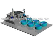 Recirculation aquaculture systems
