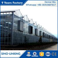 SINOLINKING Agricultural Polytunnel Glass Greenhouse Agricultural