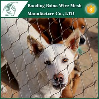 chicken coop galvanized wire mesh for chicken coop