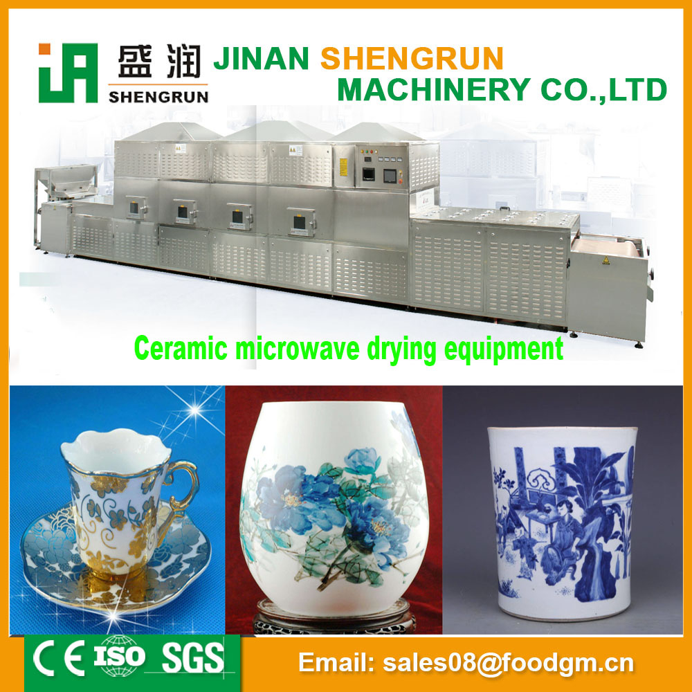 China new microwave sterilization machine