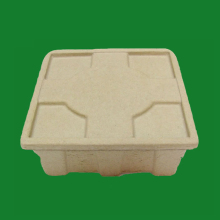 Wholesale Biodegradable cheap price mushroom packaging boxes, recycled paper pulp molded