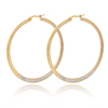 Wholesale Earrings Women 18k Gold Dubai Stainless Steel Big Hoop Crystal Earrings Samples