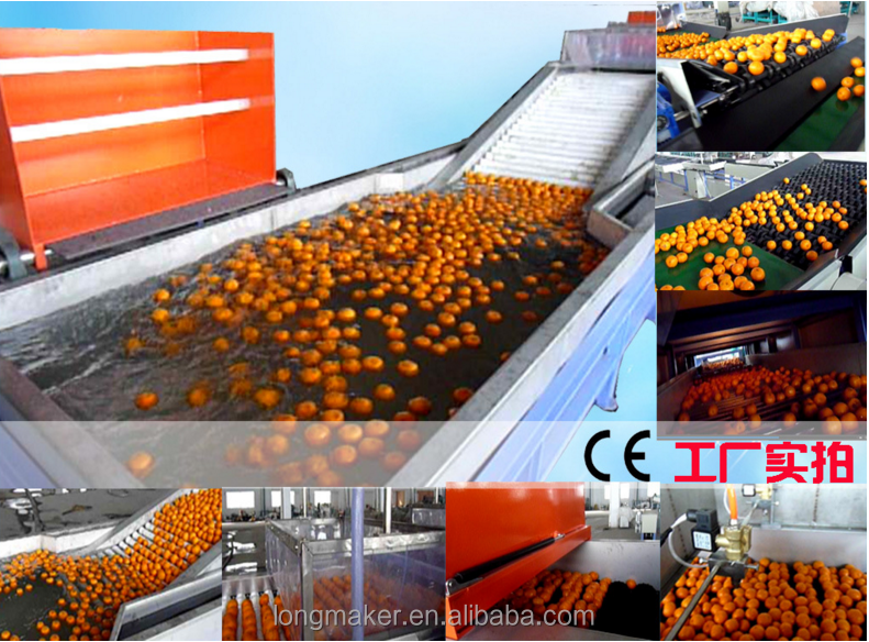 new low price high quality sales fruit wax cleaning machine,water bottle joyshaker fruit infuser