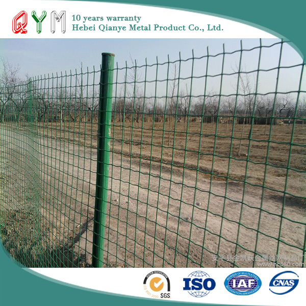 QYM-Euro Fence welded Mesh Rolls Galvanized and PVC Coated