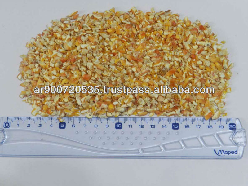 Yellow corn for animal feed, broken and milled corn