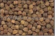 Black Chana/Gram Whole (Cicerarietinum)