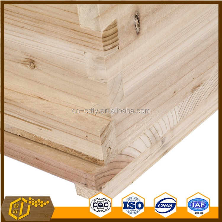 Top quality beekeeping bee hive box double layer beehive 10 frames Langstroth bee hive