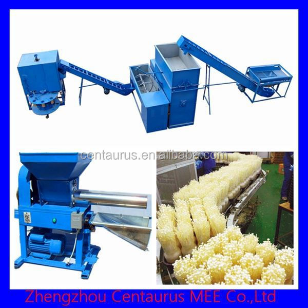Good quality edible fungus mushroom producing equipment with lowest price