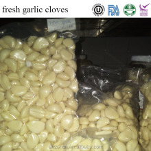 fresh purple and white fresh garlic cloves