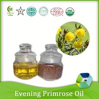 factory manufacturer healthy food factory price evening primrose seed oil