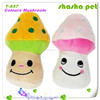 Colours Mushroom plush squeaker pet toy,pet product from China Factory wholesales