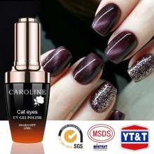 High End Nail Polish Different Colors Cat Eye Islamic Nail Polish