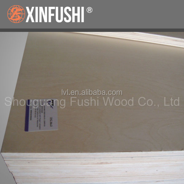 Shandong manufacture C/D grade Birch faced plywood